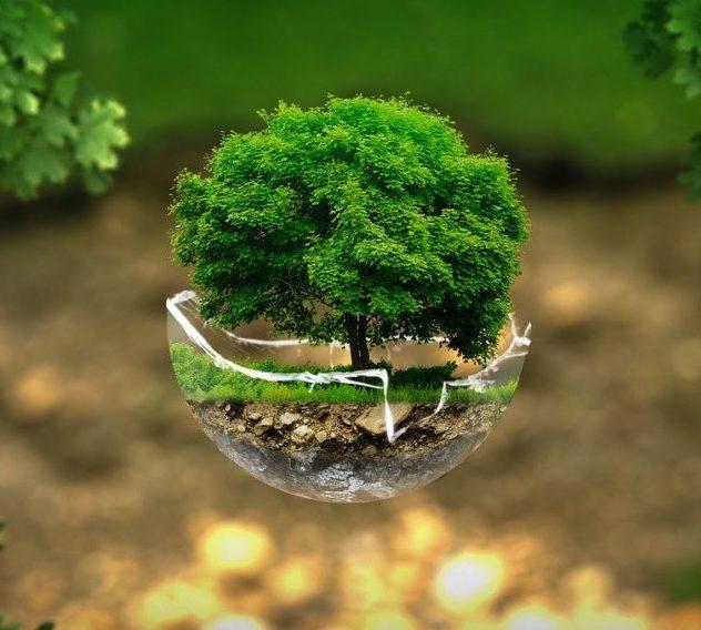 environnement-sainte-catherine